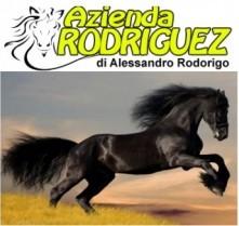AZIENDA RODRIGUEZ di Alessandro Rodorigo